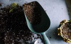 attrezzi per il giardinaggio